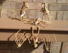 Skeleton Rat Crow Spider Hanging Vampire Bat Set of 4 Creatures Bones Halloween