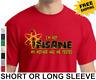 Funny The Big Bang Theory im not insane Sheldon Cooper Flash New Mens T-Shirt