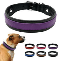 Luxury Soft Leather Dog Collars Padded Brown Black Red Blue Purple Pink M L XL