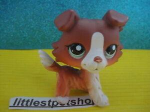 100% ORIGINAL Littlest Pet Shop Collie DOG,  # 1542 a