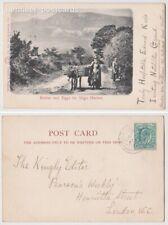 Early Postcard, Ireland, Sligo, Butter @ Eggs For Sligo Market, 1905,