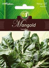 "Acelga ""lucullus "", semillas, beta vulgaris, verduras, chrestensen, PG2"