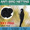 30m Filet Pêche Anti Oiseau Protection Poisson Bassin Plante Légume
