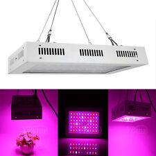 600W LED Crece Luz Lámpara Cultivo Plantas Florecer Crecimiento Full Spectrum