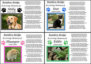 Personalised Pet Memorial Gift Paws A4 Print Rainbow Bridge Poem Photo Keepsake