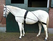 New Horse Lunging Training Aid Pessoa Based BLACK one size fit all Limited stock