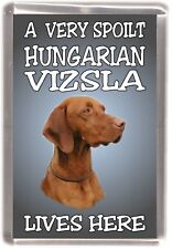 "Hungarian Vizsla Dog Fridge Magnet  ""A VERY SPOILT HUNGARIAN VIZSLA LIVES HERE"""