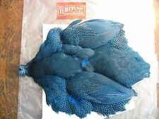 Fly Tying Whiting Farms Guinea Fowl Skin Medium- dyed Kingfisher Blue #A