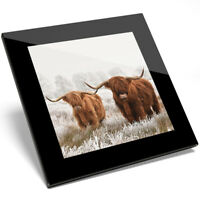 1 x Highland Cow Hairy Bull Glass Coaster - Kitchen Student Gift #14591