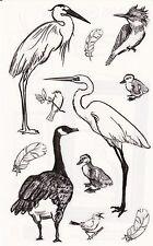 Mrs. Grossman's Giant Stickers - Waterfowl - Brush Strokes Goose Bird - 2 Strips