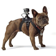 GoPro accessories Dog strap Harness belt for Gopro Hero 6/5/4/3+/3/5 4 session