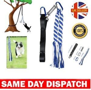 Heavy Duty Pull Tether Toy of Pet Dog Training Spring Pole Dog Rope Exercise UK