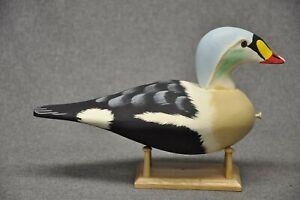 NEW SPECIES !! East Coast style KING EIDER drake duck decoy  WMW  # 2