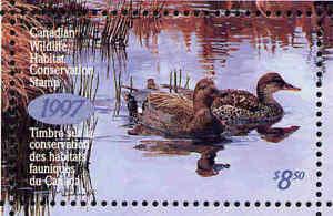 Canada 1997 Canard Tampon Mint En Dossier Comme Publié Gadwalls Par Kerri
