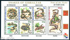 New Year of rhe Snake mnh Souvenir Sheet 2001 Gibraltar adder viperine ladder