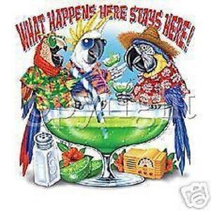 Margarita Parrots  Parrot  Tshirt   Sizes/Colors