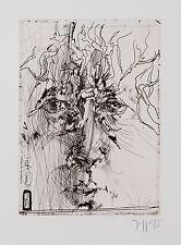 Horst Janssen/ Radierung/ Die Kunst der Graphik/ 1975