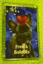 French Bulldog Fridge Magnet 77x51mm Birthday Gift boy dog,  blue Xmas Gift