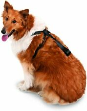 NEW Petmate Dog Seatbelt Harness Adjustable XLarge Black Up To 120lb