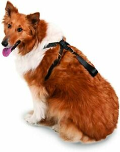 NEW Petmate Dog Seatbelt Harness Adjustable XLarge Black Up To 120lb