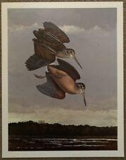 22 x 28 Texas Artists Scott and Stuart Gentling Bird Print American Woodcock