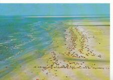 Denmark Postcard - Rosmos - The Beach - Lakolk - Ref ZZ5610
