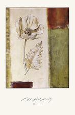 Julian Marcoux Poppy II Gross poster stampa d'arte immagine 91x61cm-porto franco