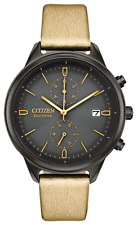 Citizen Eco Drive Women's  Watch FB2007-04H