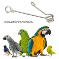 Stainless Steel Activity Anklet Bird Pigeon Parrot Chicken Leg Clip Buckle Rings