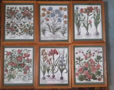 "6 Vintage Fabric Prints- Flowers-Nasturtium,Iris,Tuliip in 15"" x 12"" Wood Frames"