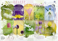 Netherlands 2019 MNH Experience Nature Stinzen Plants 10v M/S Flowers Stamps