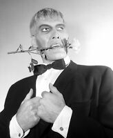 The Addams Family Cast Ted Cassidy as Lurch 8x10 Glossy Photo