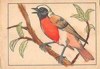 B98518  painting postcard   oiseau  bird  animals animaux
