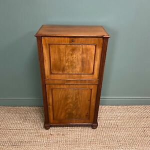 Regency Mahogany Antique Estate Cupboard with Fitted Interior