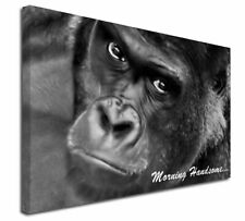 More details for gorilla with 'morning handsome'... x-large 30