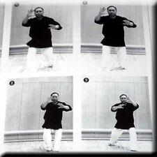 Aikido 21 - Taikikenpo Taikikempo Martial Arts Book Tai Chi Sawai 2