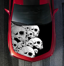 H13 SKULL SKULLS Hood Wrap Wraps Decal Sticker Tint Vinyl Image Graphic