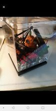 Fish tank with accessories in great condition 8 x 8