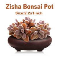 Mini Rond Chinois Zisha Céramique Pot Support Succulentes Jardin Plantes Pot