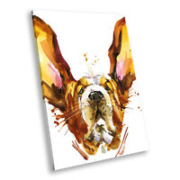 Animal Portrait Photo Canvas Picture Prints Wall Art Watercolour Dog Brown Pink