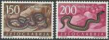 Timbres Reptiles Serpents Yougoslavie 912/3 ** lot 15950