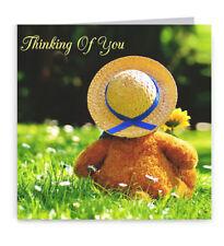 Pack of 6 Teddy Bear Birthday Cards