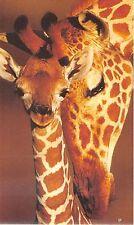 B9010 Girafes Zurigo Assicurazioni pliant