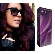 BERINA No.A14 DARK BROWN VIOLET COLOR FASHION PERMANENT CREAM HAIR DYE freeship