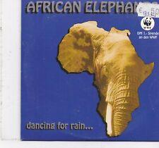 African Elephant-Dancing For Rain cd maxi single 5 tracks cardsleeve