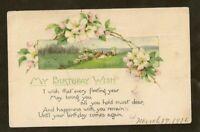 """MATT'S STAMPS Vintage Floral Postcard """"My Birthday Wish"""" Jamestown New York 1916"""