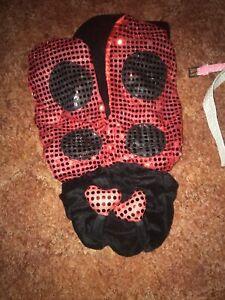 Dogs Lady Bug Costume