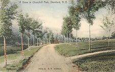 A View of A Drive in Churchill Park, Stamford NY 1909