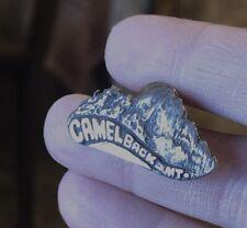 Camelback Mountain Arizona Sterling Silver Pin