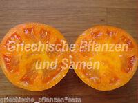 🔥 🍅 Hurma Ukrainian Tomate *** Tomaten orange *** 10 Samen